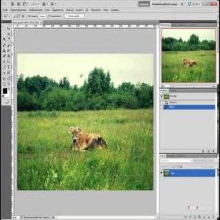 Уроки Photoshop CS5. Заливка с учетом содержимого